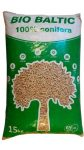 Conifera- maiselis